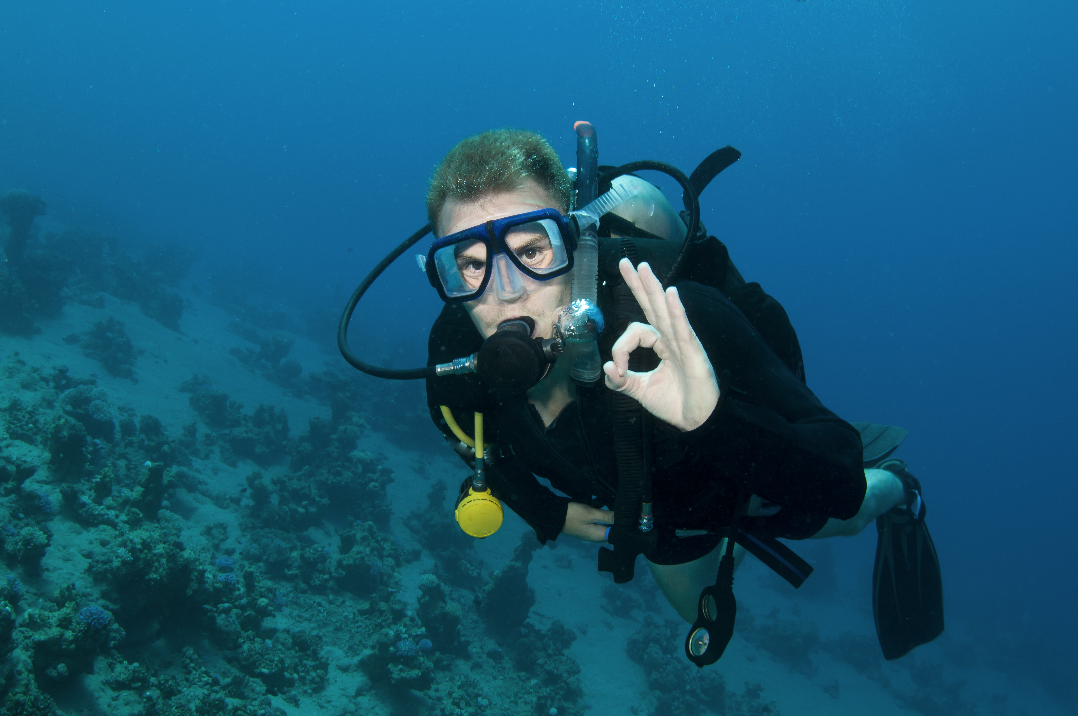 an analysis of the physics of scuba diving Why become a scuba instructor why roatan why coconut tree divers testimonials life as an instructor blog  physics of diving part 1.