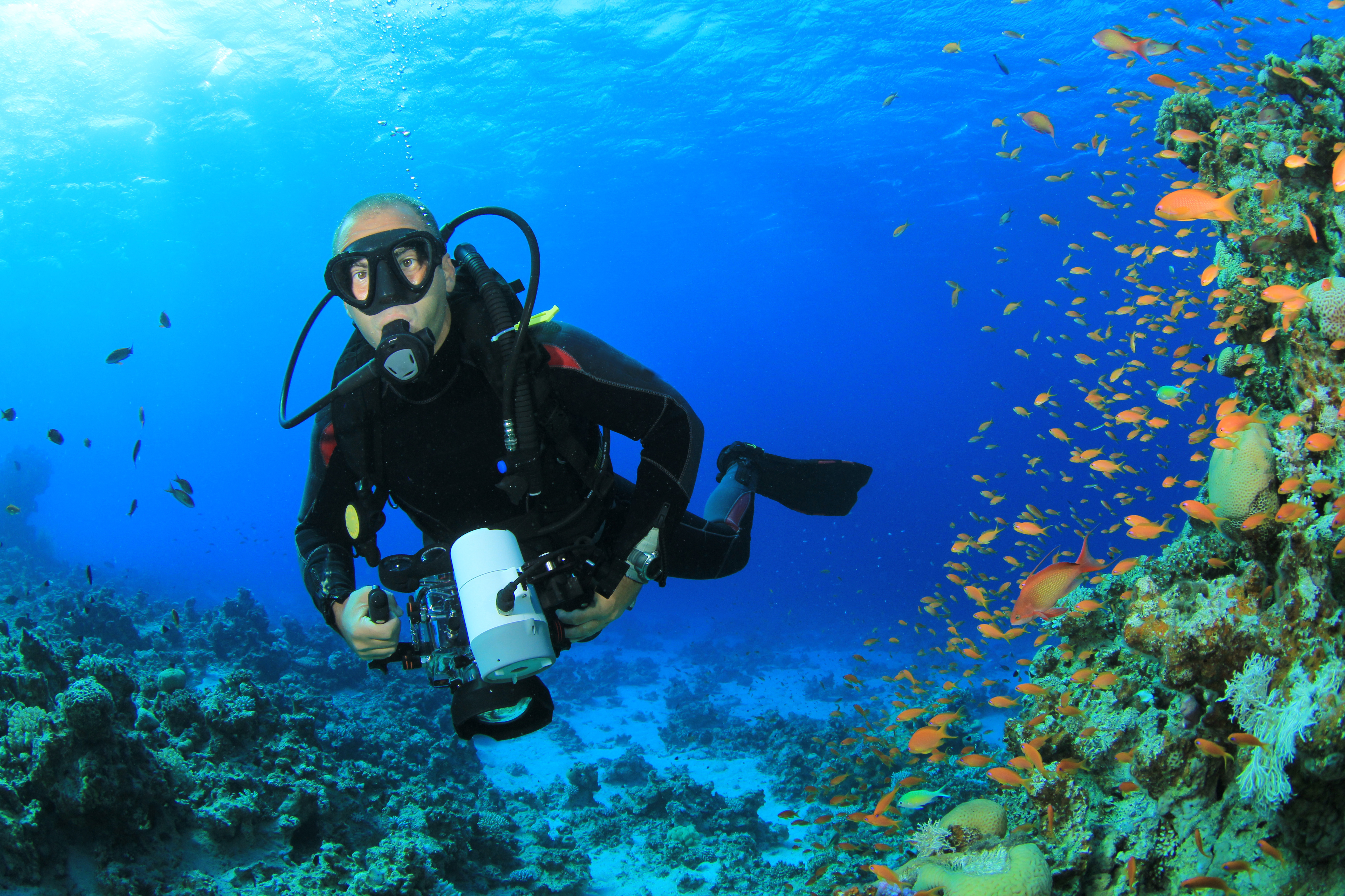 Dating sites scuba divers
